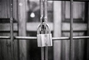 nueva-ley-marcas-patentes-trigo-seguridad